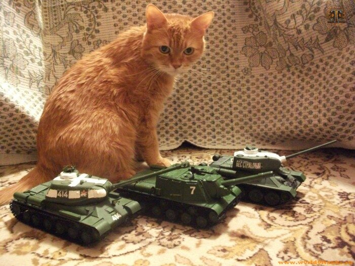 Смешные модели танков фото именно
